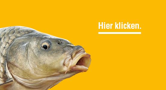 Marketing-Kampagne von BÜRO15 aus Schorndorf